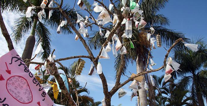 Árvore simboliza falta que meio ambiente faz e pode fazer na nossa vida - Ascom/PMVNI